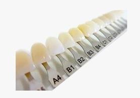 dental89